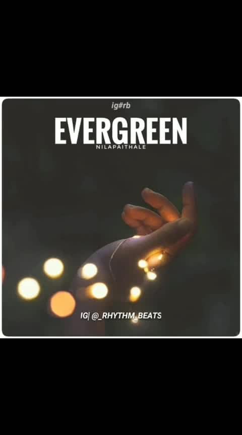 #evergreen #mallusong #musiclovemusiclife