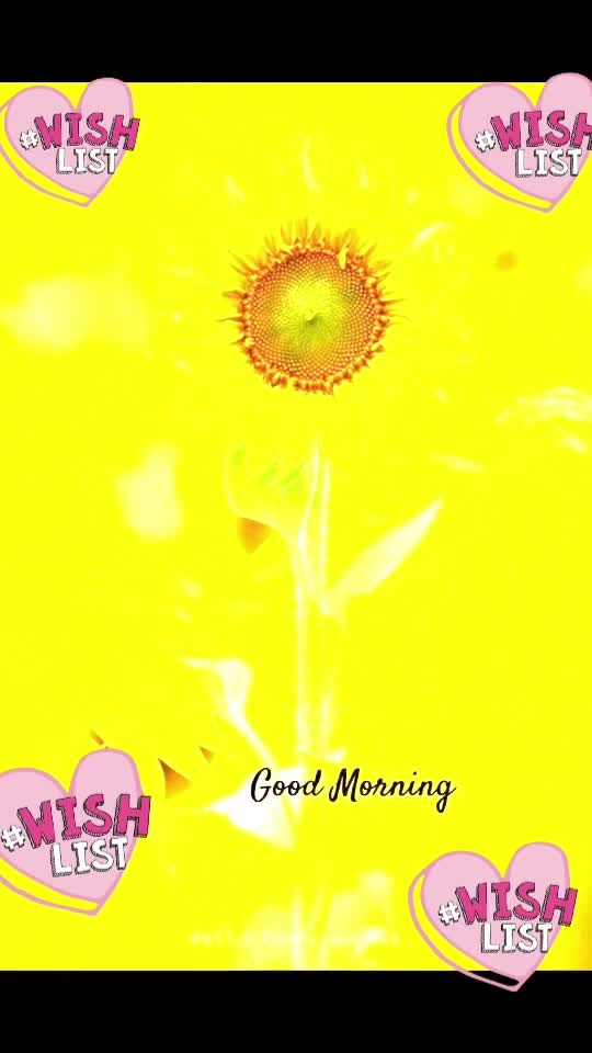 #good----morning #good----morning #good----morning #ropos-good-morning #wishlist #wishlist #wishlist #wishlist