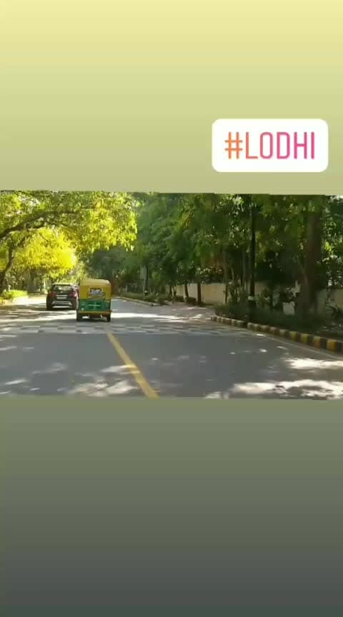 #lodhiroad #streetview #yellowgreen #themeweavers #nature #
