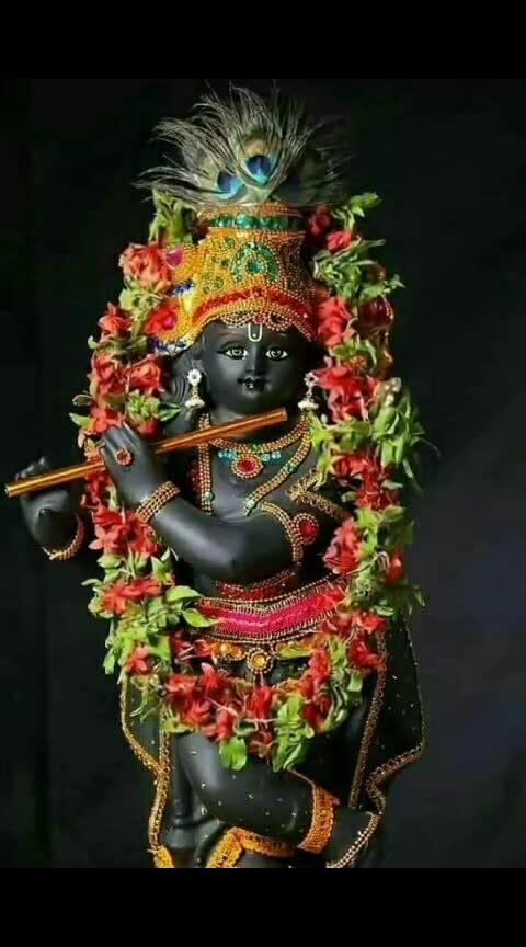 Krishna #bhakti #love #devotion #govind #kanha #radhakrishna #Jagdish #god #aarti #beautiful #lines #true #prayer #beautiful #video #hear #India #flower #studded #imlovingit #bhagwan #name #somany #hindu #shastra #puran #karnpriye #enjoy #leela