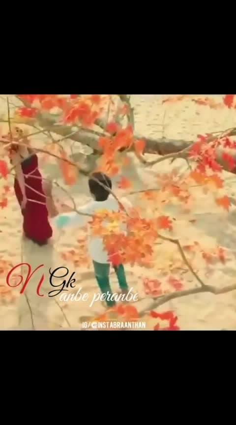 #anbe_anbe #anbeperanbe #ngk_movie #suryalove #saipallavi #rakulpreetsing #love----love----love #lust #sidsriram #sherya_ghoshal