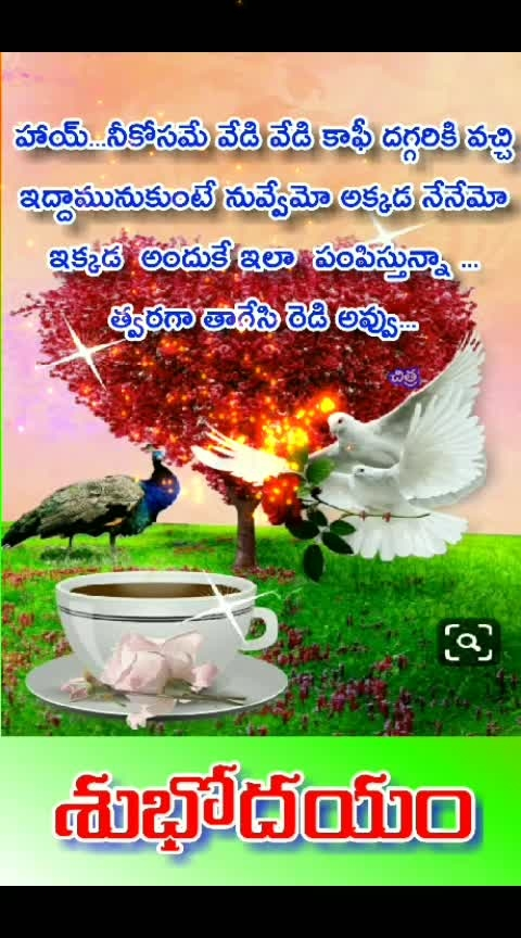 #coffeeoclock #thanks-roposo-for-such-a-colourful-video #goodmorning #happythursday #roposo #dailywisheschannel #coffee #mukundha #gopikamma