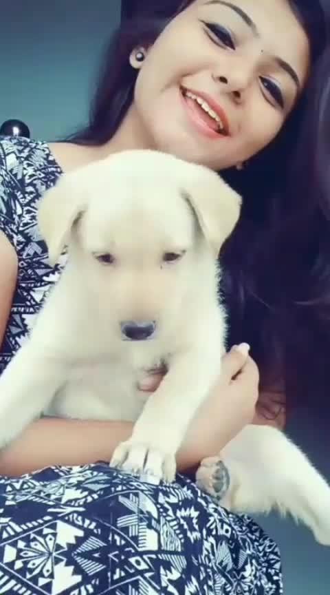 #puppylove #roposomalayalam #featureme