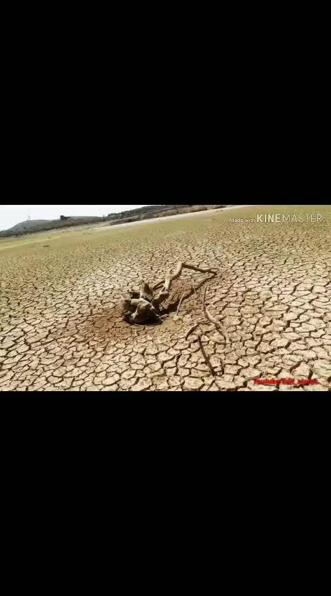 #save_water #tamil #seeman