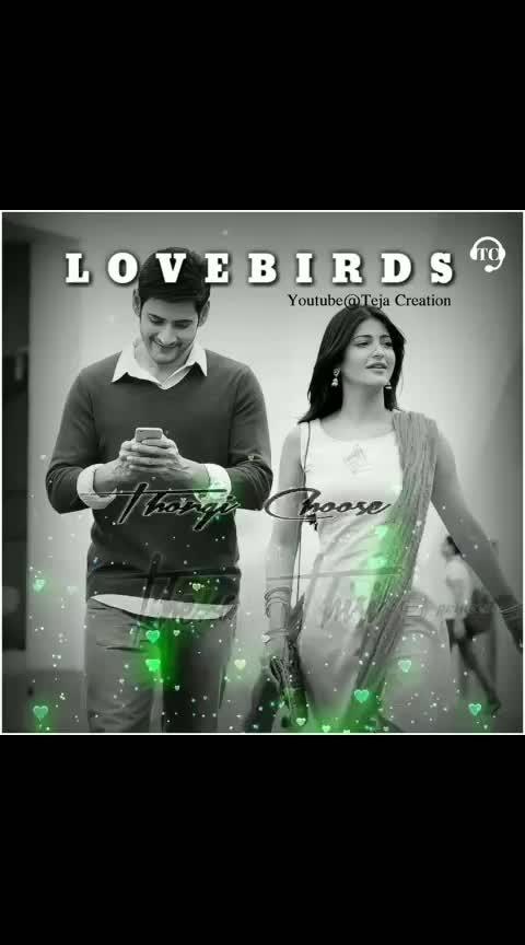 #lovebirds