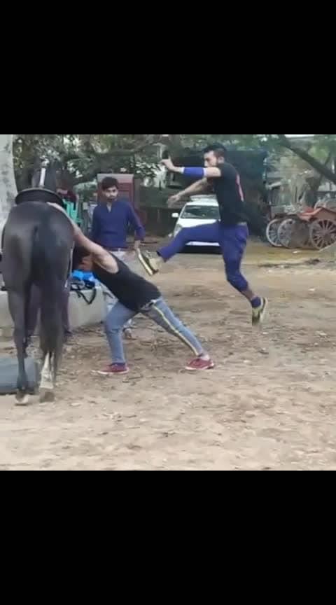 घोड़े पर बवाल #parkour #gymnastic  #actions #stunt #onemillionaudition #worldcup2019