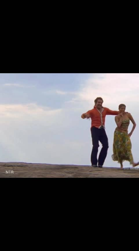 NTR and Priyamani Lovely Song ❤️🥰❤️🥰 #ntrdance #ntr #yamadonga #priyamani #love-status-roposo-beats #roposo-beats