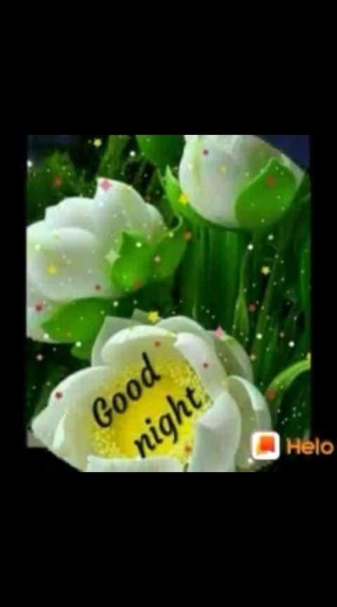 goodnight goodnight