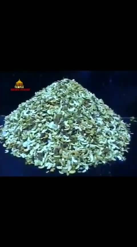 #tirupathi #bakthi