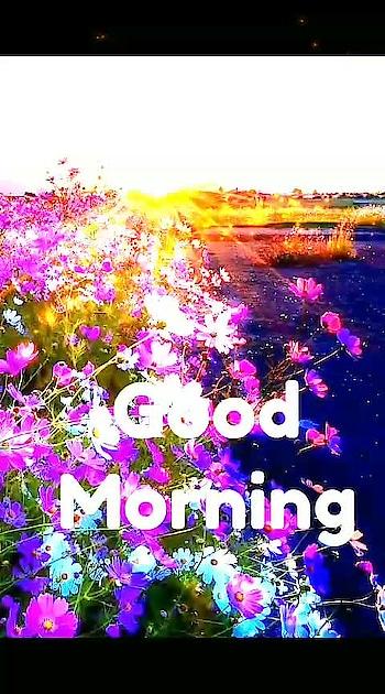 #goodmorning #dailywishes @dailywishes