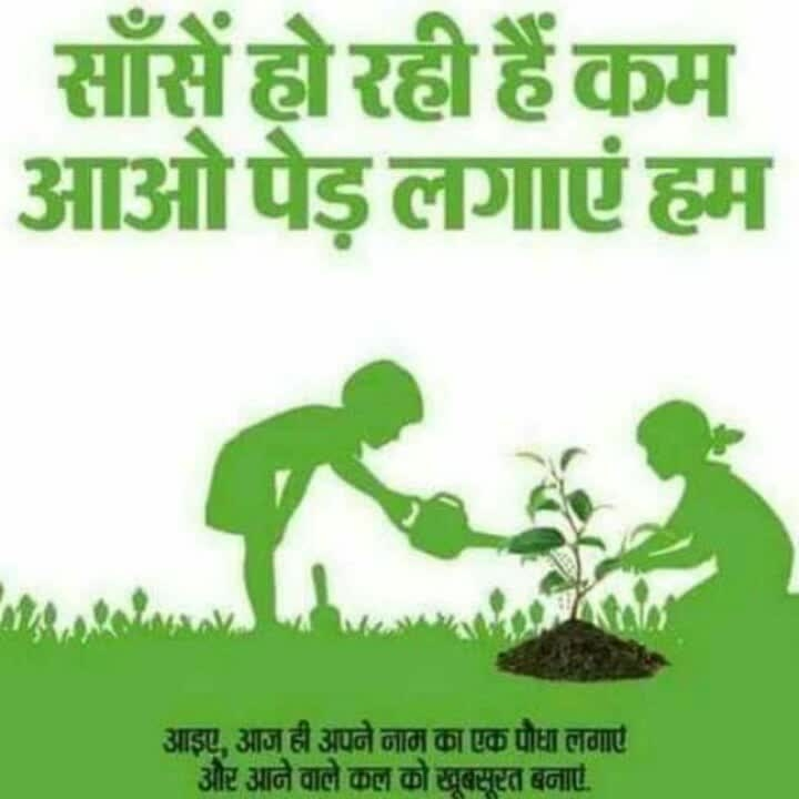 #save_trees sf