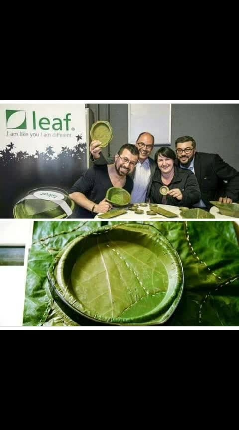 #leaf