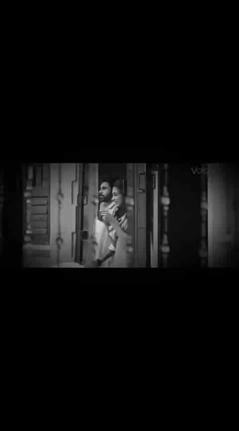 #panjaa #love-song
