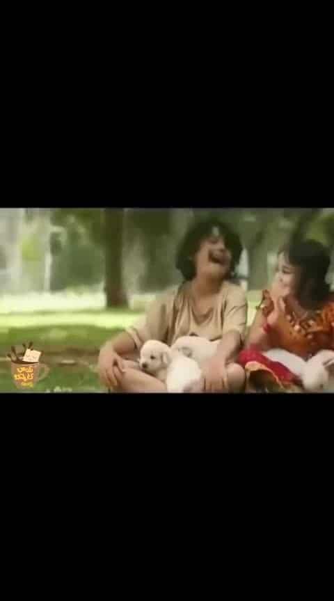 #hello #best_bgm #love_bites #whatsapp_status_video