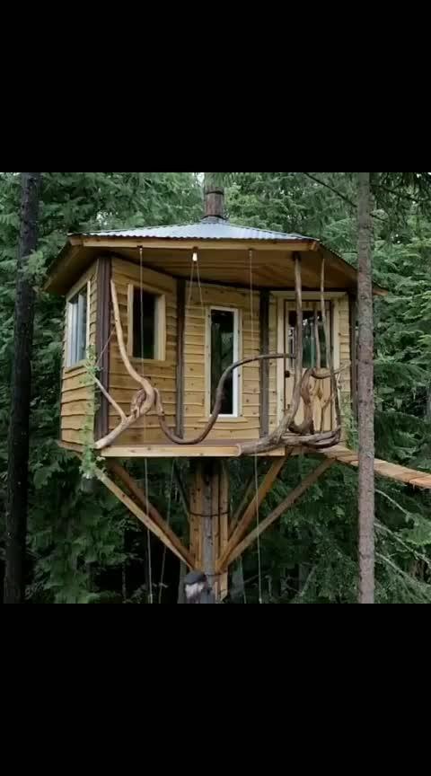 Bicycle powered tree house elevator 🤩