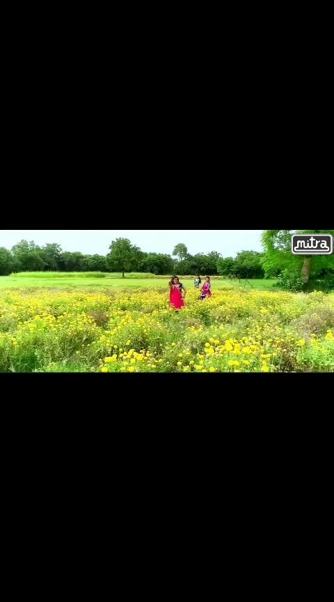 દલડું લઉ ચોરી...#tejalthakor #mamta #chaudhary #gomdanigori #village #gujarati #mitradigitals