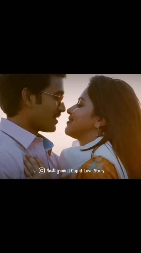 #dhanush #dhanushkraja #amalapaul #vip #anirudh #music #tamilsong #tamil #cupidlovestory #tamilactress #tamilactor #tamilbgm #tamilcinema #tamilmusic #tamilmovie #tamilan #tamily #kollywood