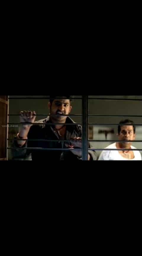 #ntr #brammy #venumadhav #simhadri #comedy