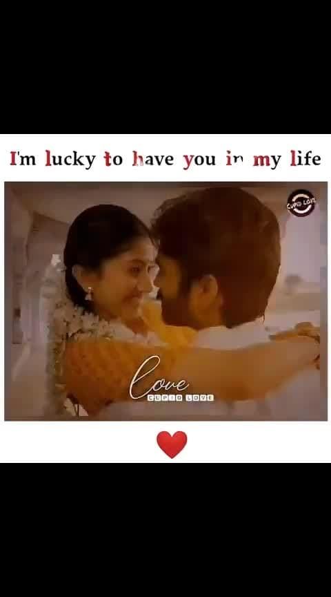 #love #danush-saipallavi