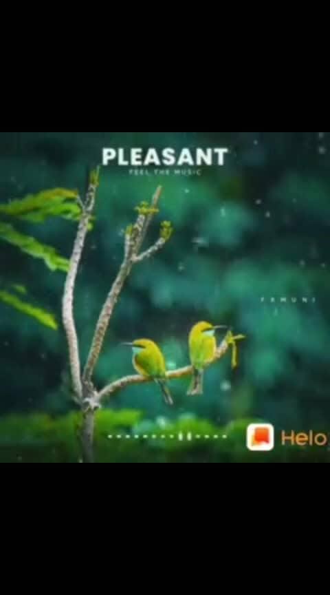 Pleasant nature