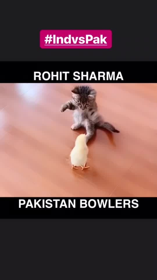 How Rohit plays with Pakistan bowlers #ChefMeghna #Cricket #cwc2019