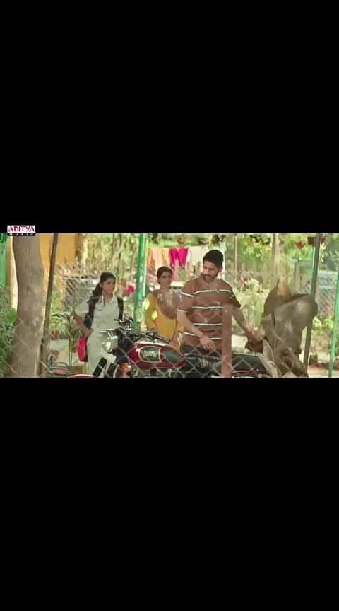 #majili_songs #nagachaitanyaakkineni