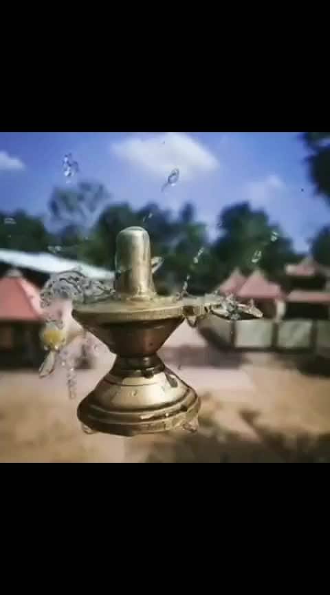 Hey Shivaay Shankara.... Swami dev Shankara... Namo Namo Adi Dev Shankara. . . . #shiv #lordshiva #devina #shivkilaadli #omnamahshivaya #shivaay #shivbhakt #bholenath #harharmahadev #shivika #shiv #shankar #Hindu #hindugod #hinduism #mahakaal #shivlinga #shiva #mahadev