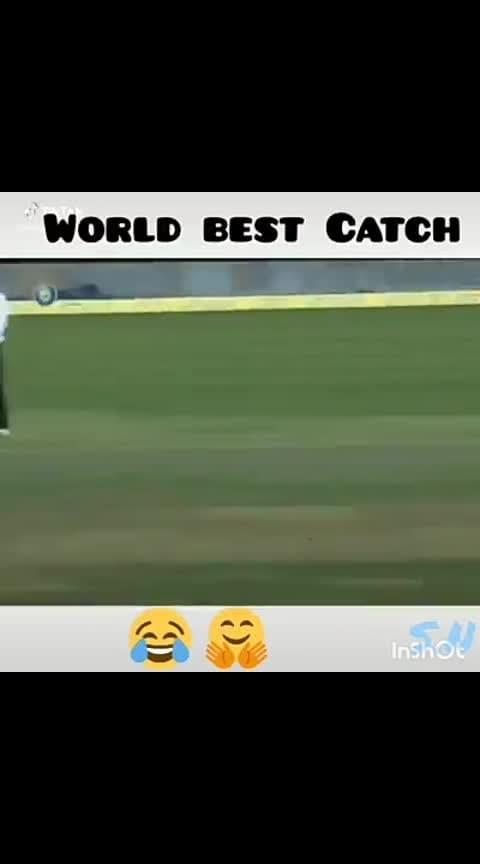#bestcatch