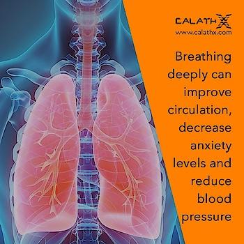 Breathing #Exercise Benefits  www.calathx.com  #healthcare #health #healthylife #Work #healthylifestyle #healthyliving #wellness #motivation #healthyhappylife #GetStrong #Workoutwithcalathx #TrainHard #Gains #Strengthtraining #Physiquefreak #Yoga #CrossFit #FitFluential #Fitnessfriday #Squats #like4like #calisthenics #fitness #calathx