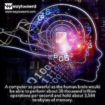 #Computer vs #Human Brain  www.waytoonerd.com  #artificialintelligence #ai #machinelearning #technology #datascience #robotics #iot #innovation #bigdata #tech #blockchain #robots #business #digitaltransformation #robot #awesome #quote #follow #android #instatech #technews #geek #developer #gadget #factsdaily