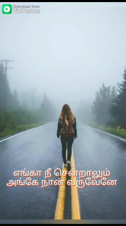 #tamil #tamilvideo #tamillyrics #status #tamilwhatsappstatus #feelings #tamilsonglyrics #tamil30secstatus #love #lovestatus #mr_g #pain #feelings #hearttouching #heartbroken #lyricalsongs #lyricalvideo #lyrical #tamillyricalstatus #tamillyricalwhatsappstatus