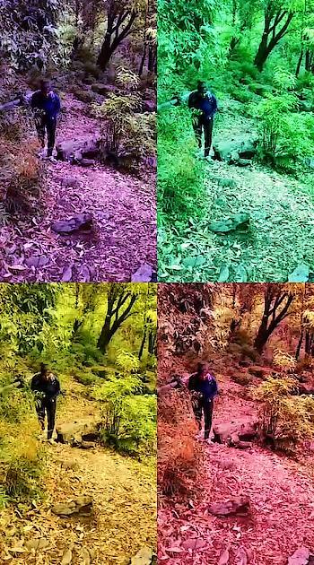 #yaad #yaadein #apki #old-is-gold #old #song #latamangeshkar #ropo-girl #hillstation #hills #trekking #travelphotography #travelblog #place #singers #amazing-art #artist #artistlife