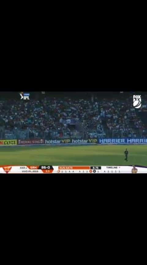 Warner fire #ipl #cricket #srh