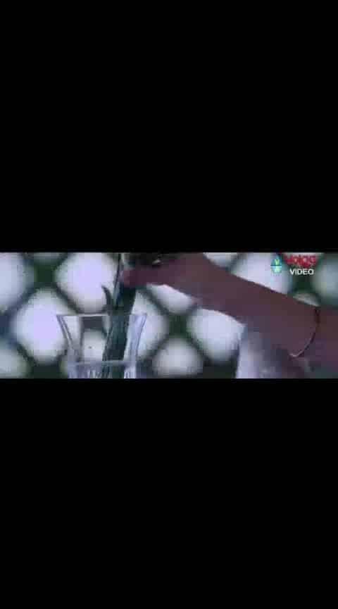 #nikhil #swathi #karthikeya #lovesong #videoclip #whatsapp-status