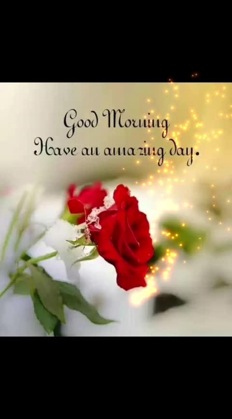 Happy Sunday! #goodmorning-roposo #goodmorningpost #dailywisheschannel #dailywishes #sundaymorning #sunday #haveaniceday