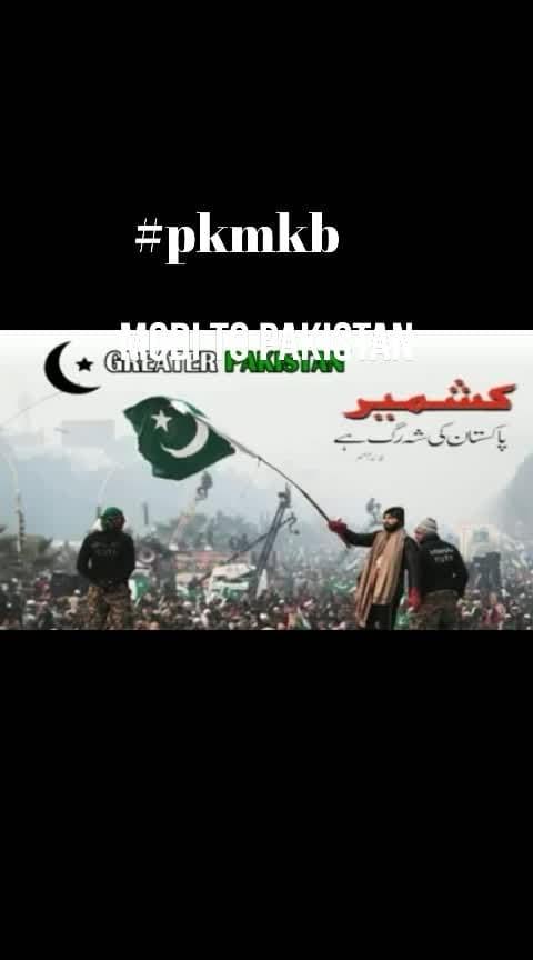 #pkmkb