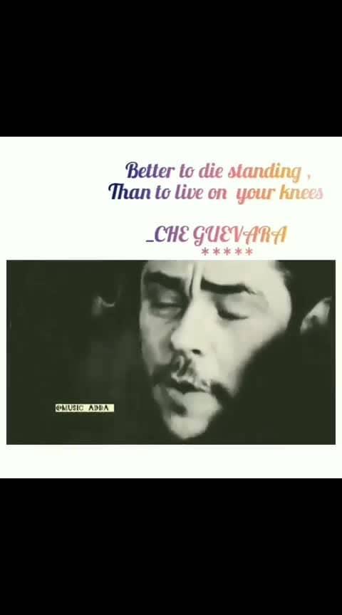 Che Guevara 🖤🖤🖤 . . . #cheguevara #cheguevaraclub #hollywood #hollywoodsongs #bollywood #bollywoodsongs #telugudubsmahs #thamilsong #kannadasongs #othayadipathayila #vishal #vijaydevarkonda #kamalhassan #rajinikanth #maheshbabu #salmankhan #kareenakapoor #anushkasharma #prabhas #kabirsingh #yash #bahubali #europe #samantha #sudigalisudheer #danush #dqsalmaan . . . @tiktok @samanthaakkineni  @maheshbabu #russia #bobmarley #iplt20