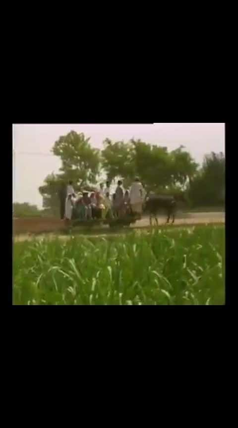 horse train still running in india #amazing #horsetrain