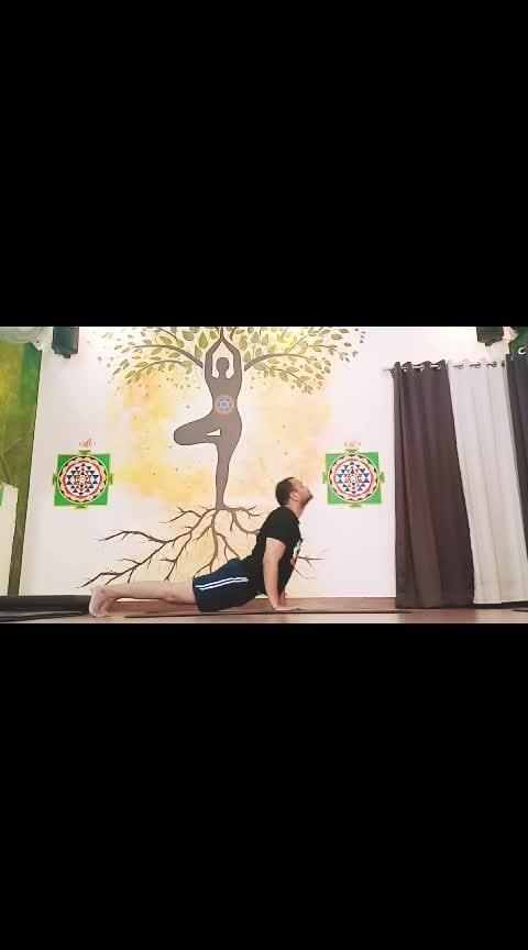 Ashtanga Yoga Primary Series With Sadhak Anshit  #ashtangayoga  #yogaflow  #vinyasaflow  #workoutmotivation  #workout  #yoga  #flow #yogaflow #yogalove  #fitness  #fitnessgoals  #fitnessinspiration  #fitnessaddict  #yoga #yogalove #yogaday  #yogachallenge  #yogaeverydamnday  #yogainstructor  #yogapose  #yogafitness  #yogaposes  #yogateacher  #yogapractice  #yogafit  #yogacrazy  #yogaflow #yogamotivation  #yogatips  #yogaclass  #yogaathome  #yogajourney  #yoga  #fitness  #fitnessaddict #fitnessgoals #fitnessblogger  #fitnessinspiration #mysoreyoga  #yogaflow #armbalance  #armbalances #indian  #kanpur #roposo #ropsotrending #trendeing