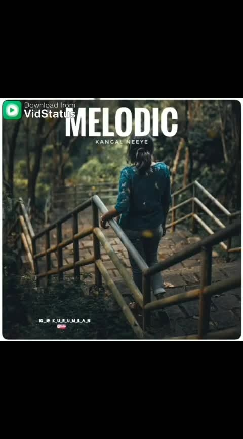 #melodious