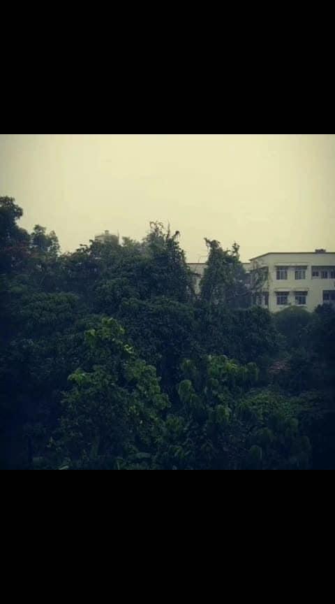 മഴ...❤️#kannur#KUC#rainlover #naturelover