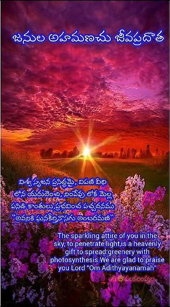 """విశ్వ సృజన ప్రసిద్ధమై, విపణి వీధి లోన యరుదెంచి, నింపేవు లోక మెల్ల పసిడి కాంతులు,ప్రభవించ పచ్చదనము """"అవనికి ఘనకీర్తినొసగు అంబరమణి"""" 🌿🌿🌿🌿🌿🌿🌿🌿🌿🌿🌿🌿 ✍🌞పలకరింపుల  🍀🍀🍀తం సూర్యం ప్రణమామ్యహం🍀🍀🍀 అందరికీ శుభోదయ వందనాలు🌹🌹🌹 #morningmotivation #morningvibes #పలకరింపుల #omnamosuryadeva"""