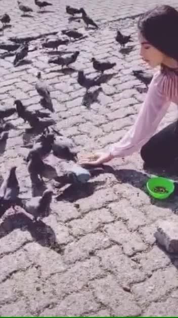 💖💘#masakali #roposostars #birdlover ❤️💝