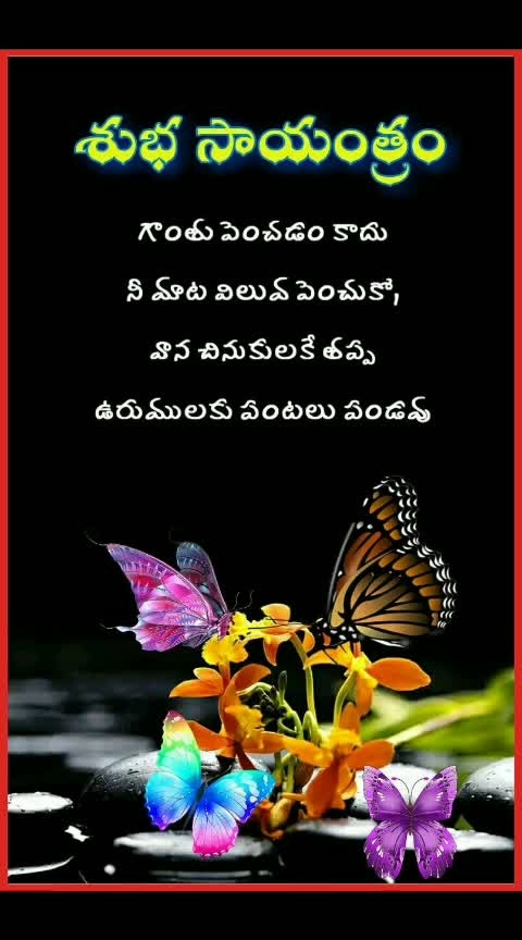 #roposo-good-evening #roposo-soulful-quotes #roposo-dayli-wishes #roposo-telugu