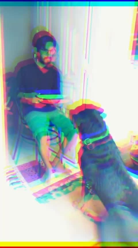 #dogsitting
