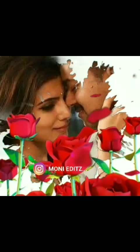 #romantic #lovelybgm #theri #thalapathyvijay #samantha #roposobeats 🎻🎼🌹🌹🌹🌹