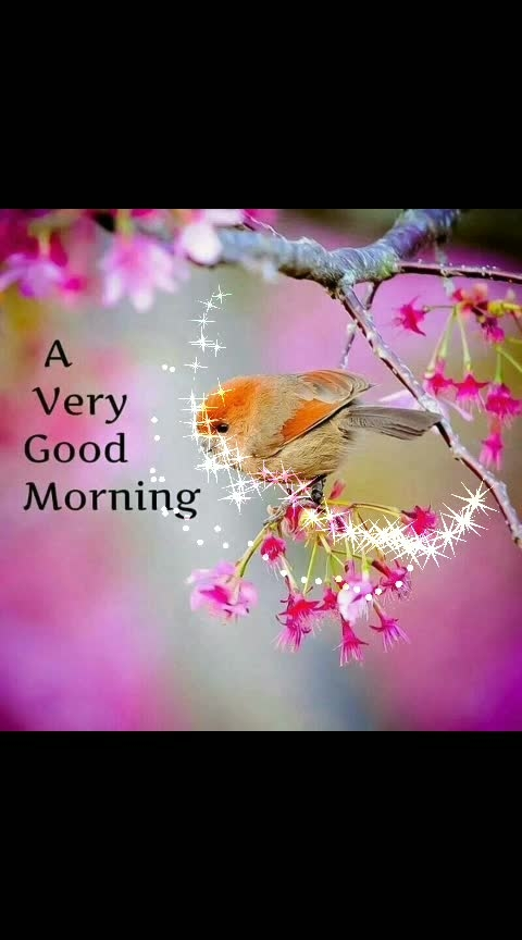 #goodvibes #roposo-morning #wishes #roposo-wishes