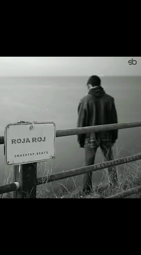 Roja Roja..