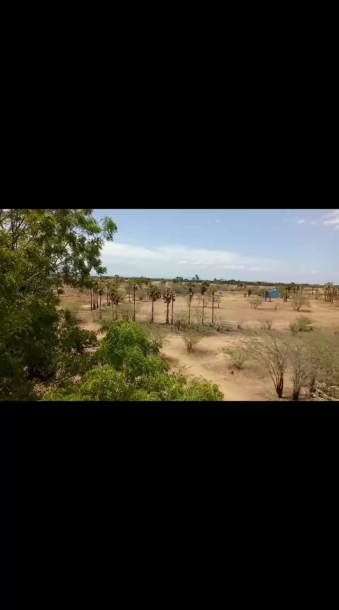 my Grandmother village #mirugam movie shootingspart... #madurai #nature_shooters #love----love----love