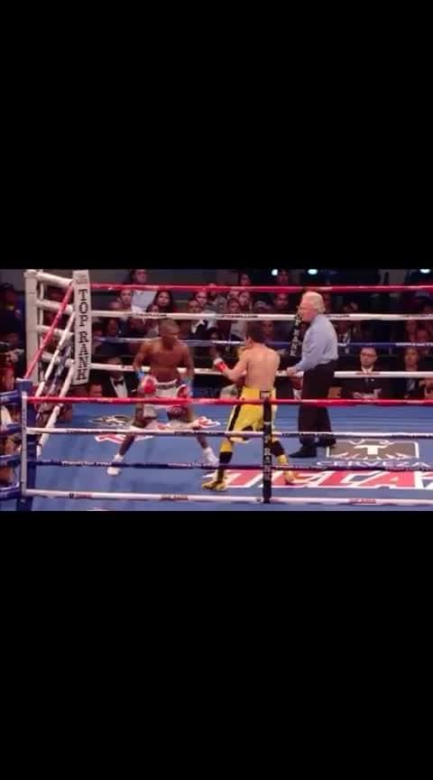 #boxer #boxingfitness #gymlife